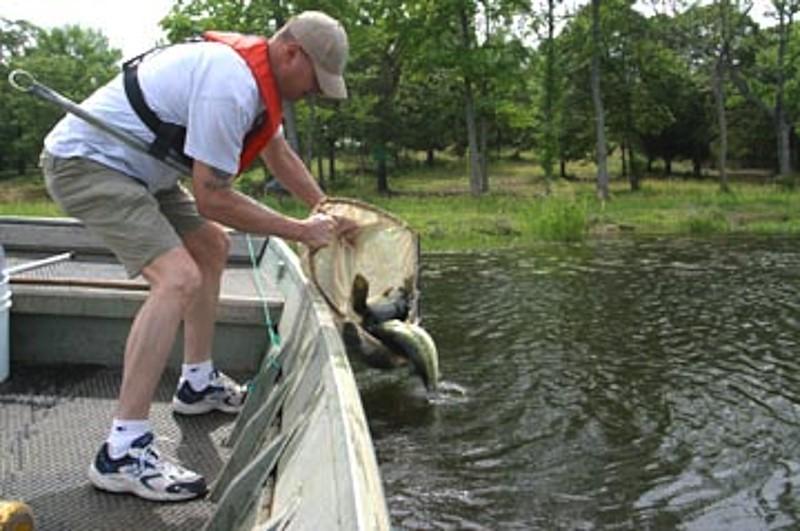 Big Bass Retire to Lake Athens | FishingWorld com