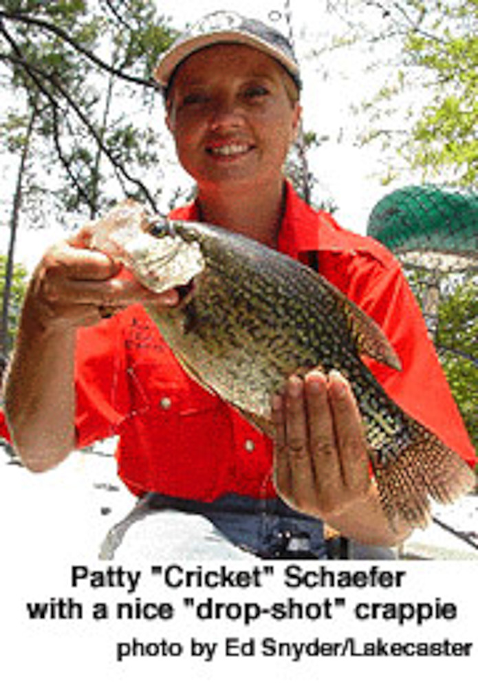 Of Bream, Crickets, and